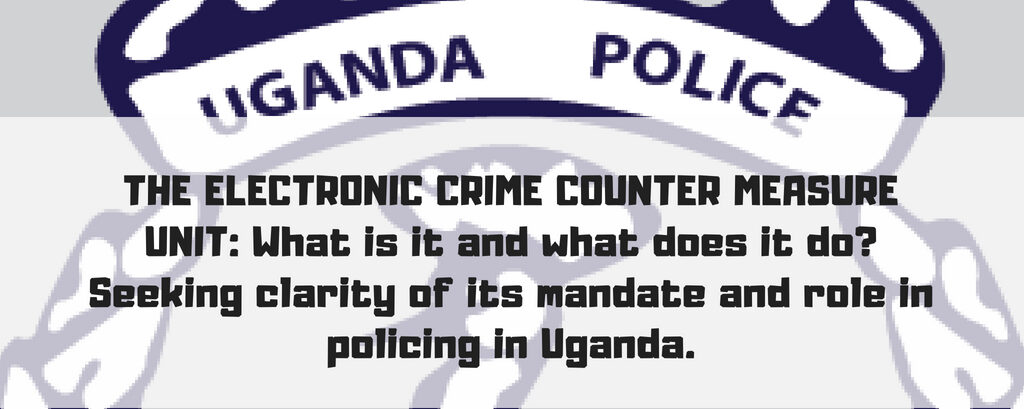 The Electronic Crime Counter Measure Unit