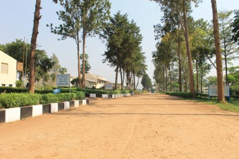 Land Row Between Central & Buganda Government