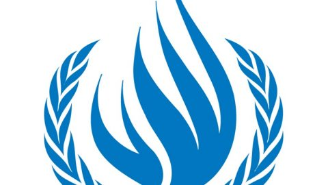 UN Council Reaffirms Online Rights and Freedoms